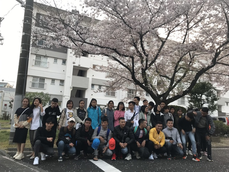 Nhật Bản – điểm đến du học nhiều thế mạnh