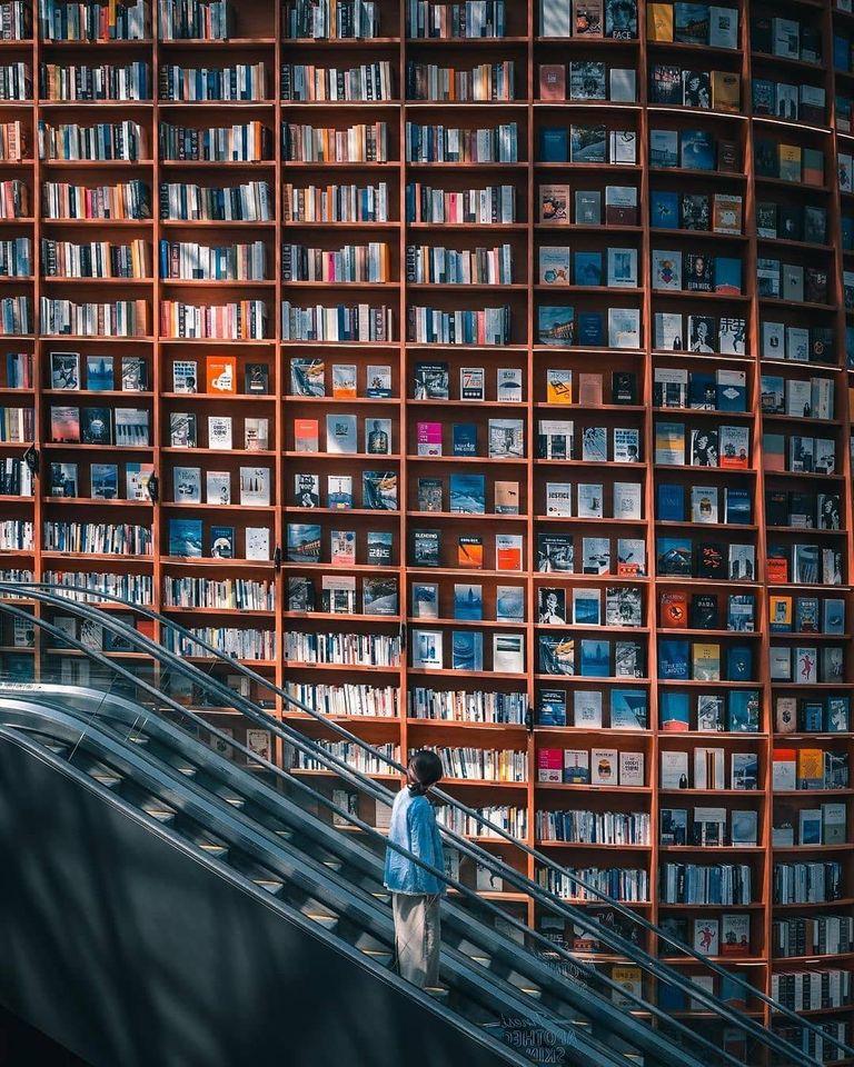 Du học Hàn Quốc có là con đường tốt cho tương lai?