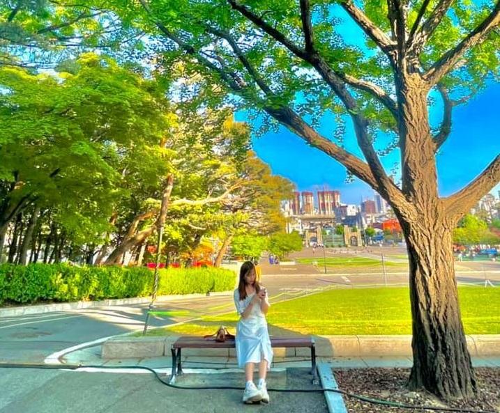 Những điều cần biết nếu muốn đi du học Hàn Quốc nhanh chóng, chi phí thấp